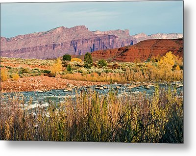 Metal Print featuring the photograph Along The Colorado River by Geraldine Alexander
