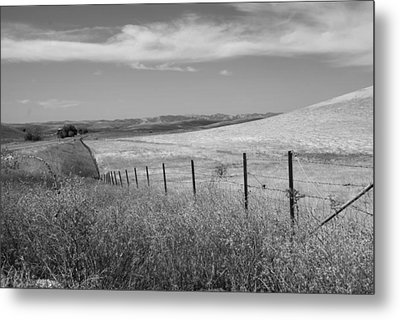 Metal Print featuring the photograph Along The Line by Kathleen Grace