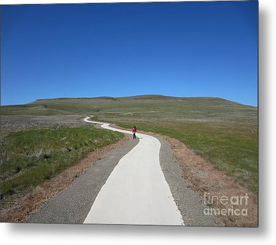 Along The Path Metal Print by Laurianna Taylor