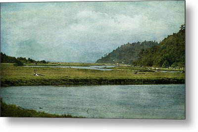 Along The Road Metal Print by Terrie Taylor