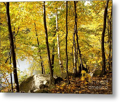Along The Way Metal Print by Sue OConnor
