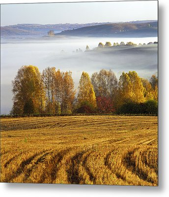 Altai Foothills Metal Print by Pavel  Filatov