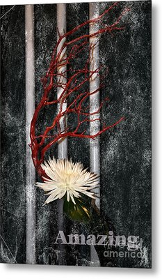 Metal Print featuring the photograph Amazing by Tamera James