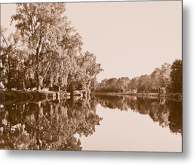 Amber Reflection Metal Print by Sara Frank