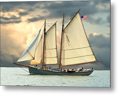 American Eagle Metal Print by Fred LeBlanc