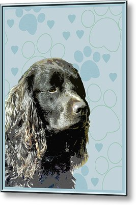 American Water Spaniel Metal Print by One Rude Dawg Orcutt