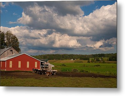 Metal Print featuring the photograph America's Breadbasket by Cindy Haggerty