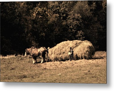Amish Hay Wagon Metal Print by Tom Mc Nemar