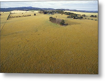 An Aerial View Of Farmland Metal Print by Jason Edwards
