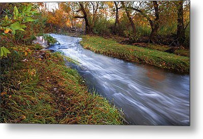 An Autumn Meandering Metal Print by Ryan Weddle