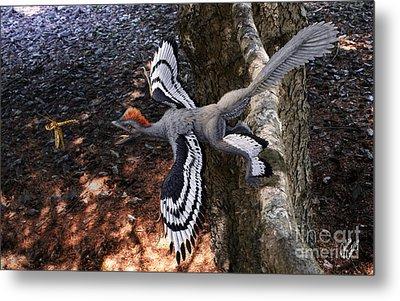 Anchiornis Huxleyi  Metal Print