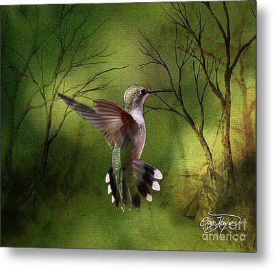 Angel Wings Metal Print by Cris Hayes