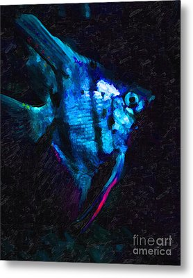 Angelfish Metal Print by Wingsdomain Art and Photography