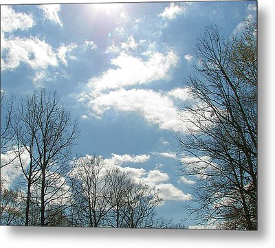 Metal Print featuring the photograph Angels On High by Pamela Hyde Wilson