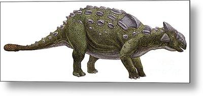 Ankylosaurus Magniventris Metal Print by Sergey Krasovskiy