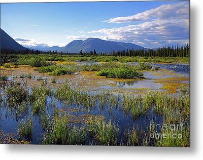 Annie Lake In Yukon Metal Print by Charline Xia
