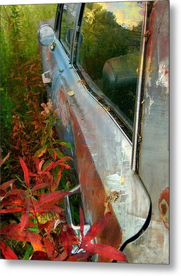 Another Autumn Metal Print by Shirley Sirois