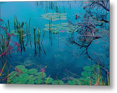 Another World Vii Metal Print