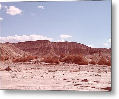 Anza Borrego  Metal Print by Naxart Studio