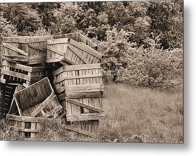 Apple Crates Sepia Metal Print by JC Findley