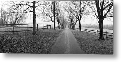 Araby Farm Lane Metal Print