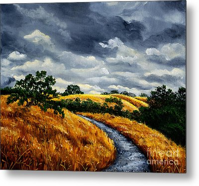 Arastradero Trail In Early Autumn Metal Print by Laura Iverson