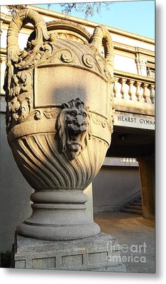 Architectural Detail . Large Urn With Lion Gargoyle  . Hearst Gym . Uc Berkeley . 7d10197 Metal Print by Wingsdomain Art and Photography