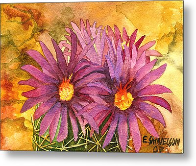 Arizona Pincushion  Metal Print by Eric Samuelson