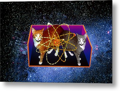 Art Of Schrodinger's Cat Experiment Metal Print by Volker Steger