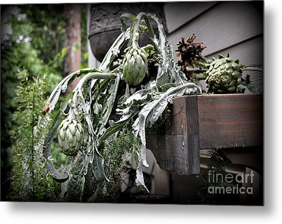 Metal Print featuring the photograph Artichoke by Tanya  Searcy