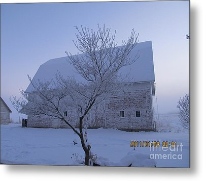 Metal Print featuring the photograph As White As Snow by Tina M Wenger