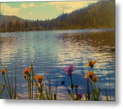 Metal Print featuring the photograph Aspen's Gift by Shawn Hughes