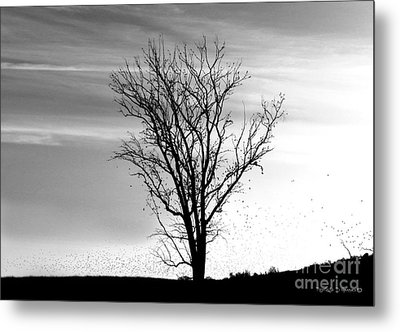 Metal Print featuring the digital art At End Of Day I  by Rhonda Strickland