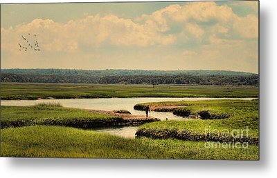 Metal Print featuring the photograph At The Marsh by Gina Cormier