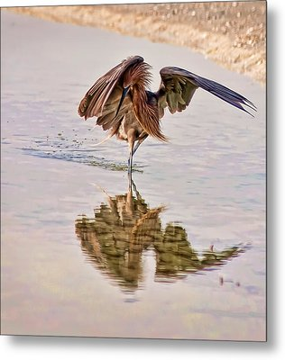 Attack Dance Metal Print