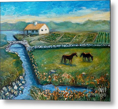 August Evening In Connemara Metal Print by Rita Brown