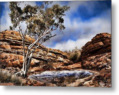 Australia Landscape 5 Metal Print by Wendy White