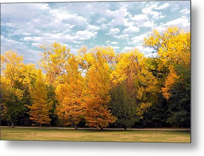 Autum In Texas Metal Print