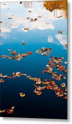 Autumn - 3 Metal Print by Okan YILMAZ
