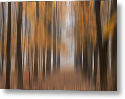 Autumn Abstract Metal Print by Darlene Bushue