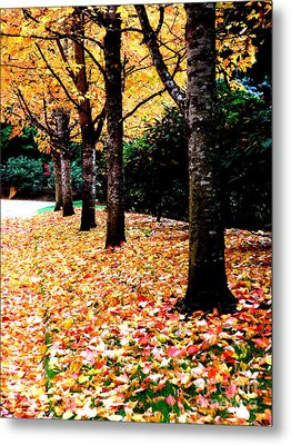 Autumn Alley  5 Metal Print by Tanya  Searcy