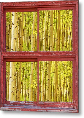 Autumn Aspen Trees Red Rustic Picture Window Frame Photos Fine A Metal Print by James BO  Insogna