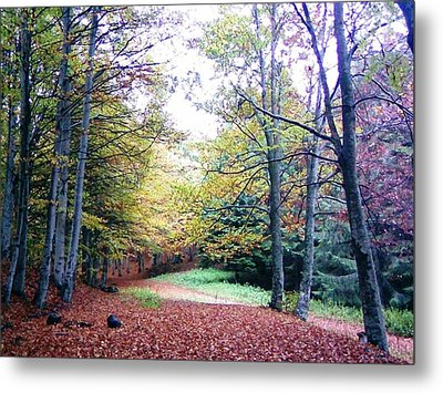 Autumn At Red Mountain Metal Print by AmaS Art