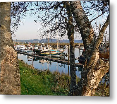 Autumn At The Harbor Metal Print by Pamela Patch
