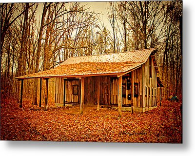 Metal Print featuring the photograph Autumn Barn by Mary Timman