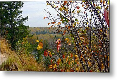 Autumn By The River Metal Print by Jim Sauchyn