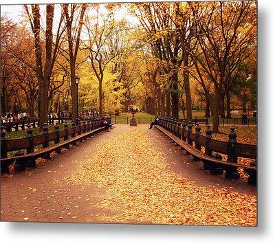 Autumn - Central Park - New York City Metal Print by Vivienne Gucwa