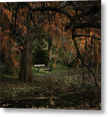 Autumn Colors Metal Print by Akos Kozari