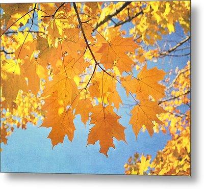 Autumn Colors Metal Print by Kim Hojnacki
