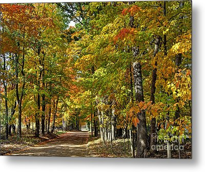 Autumn Colors Metal Print by Rodney Campbell